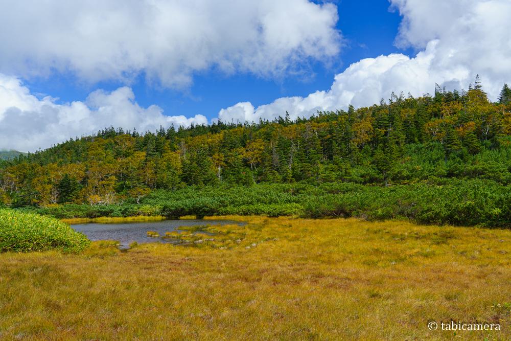 北海道羅臼湖二の沼 秋 紅葉