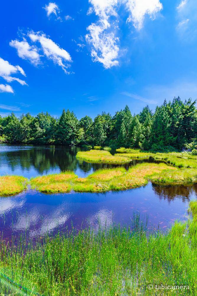 志賀高原の渋池