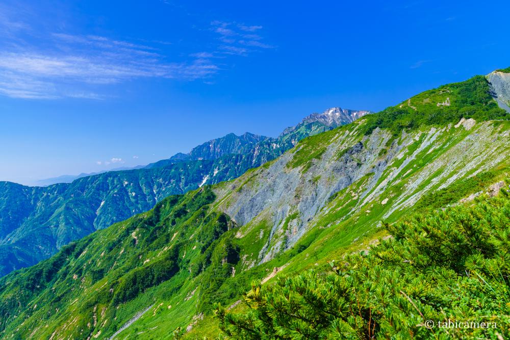 白馬唐松岳登山道