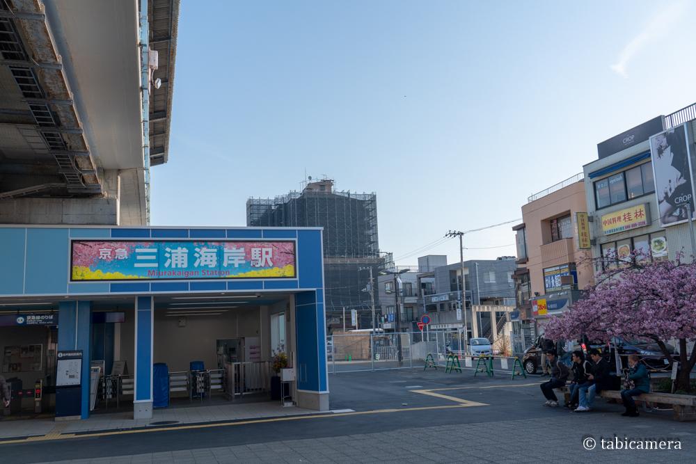 三浦海岸駅河津桜バージョン