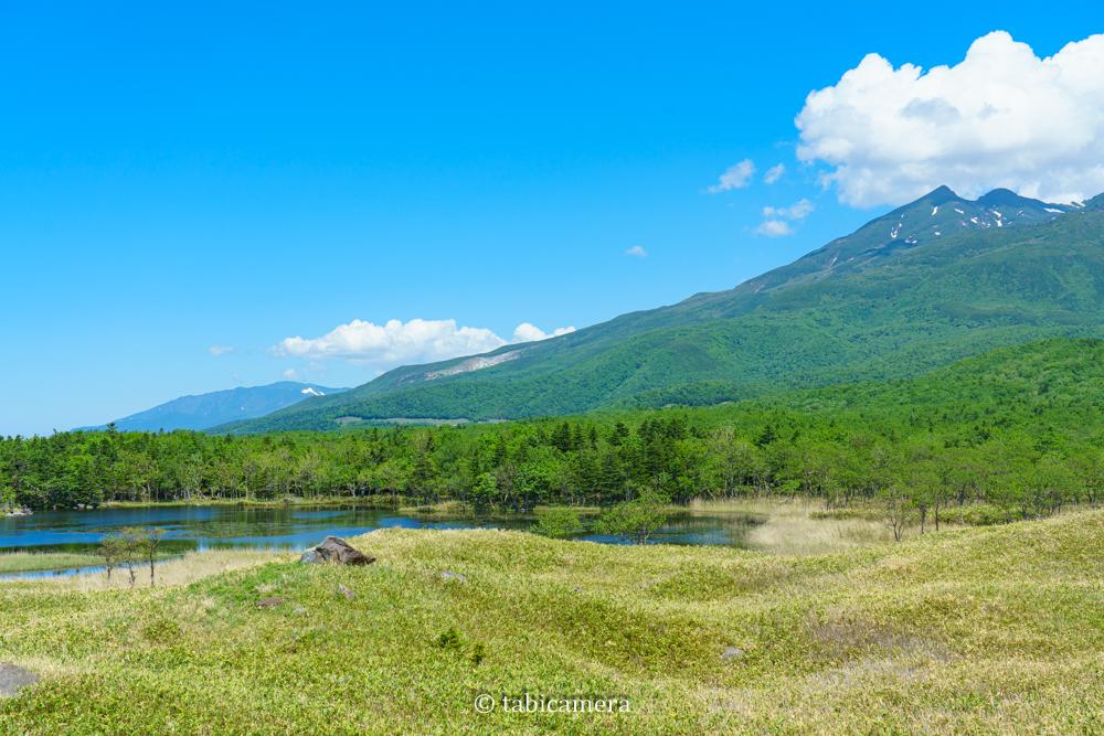 知床五湖遊歩道