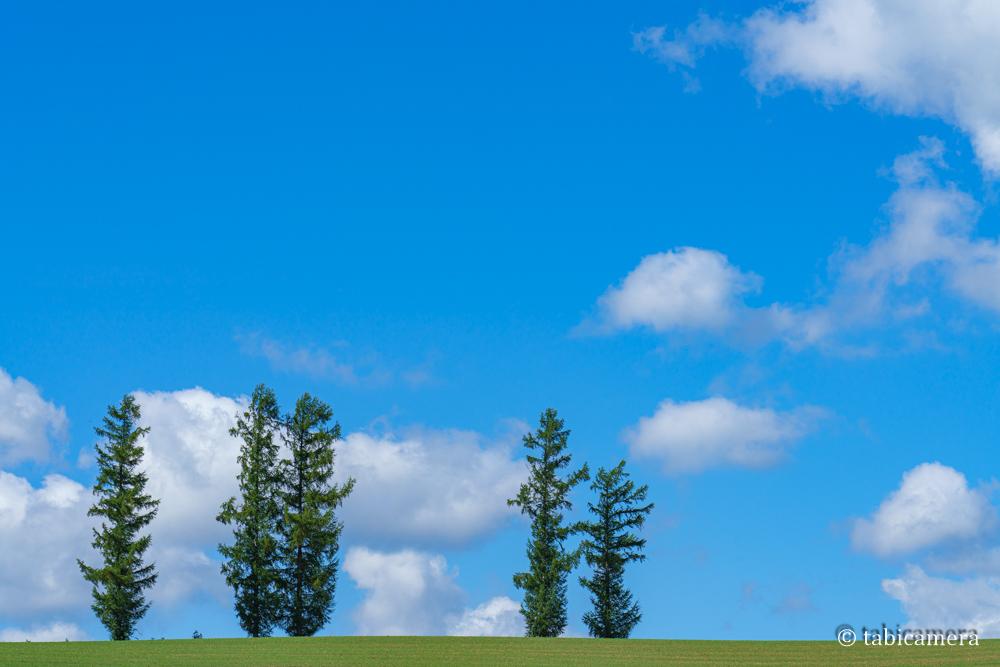 美瑛マイルドセブンの丘