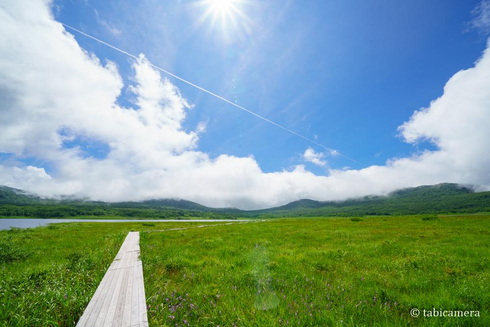 雄国沼 飛行機雲 湿原