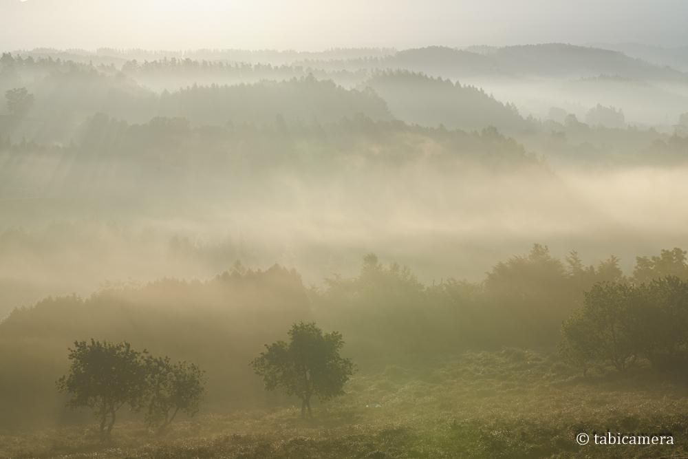 深山峠展望台の朝霧