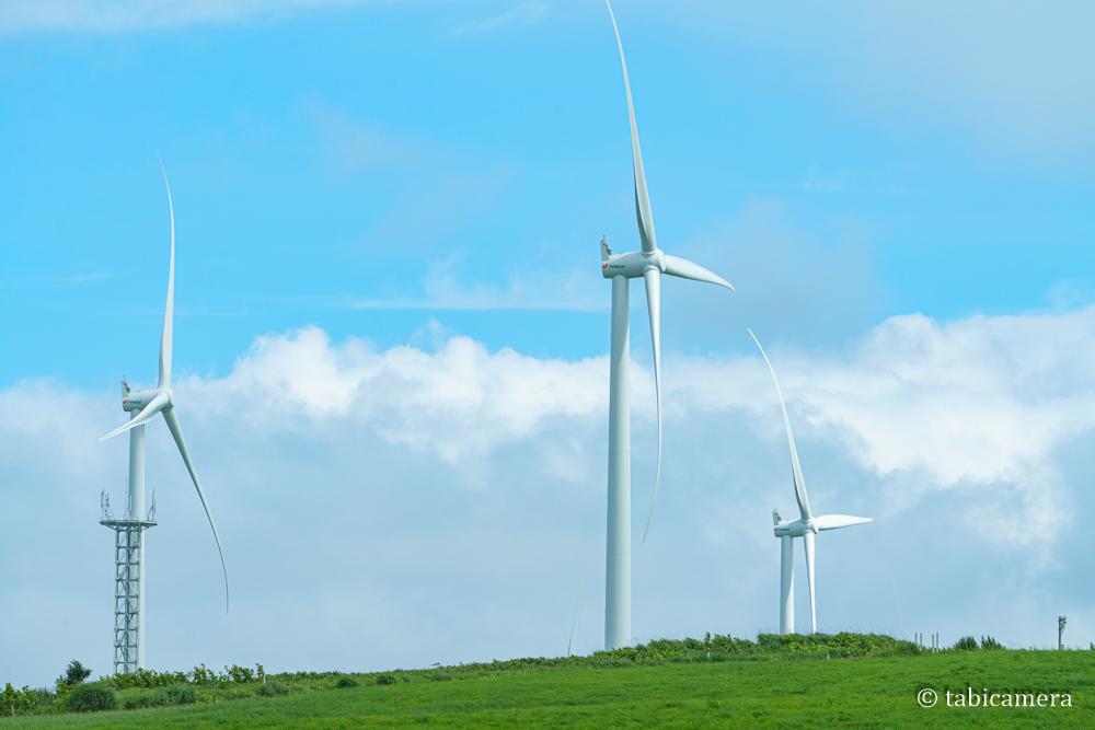 せたな町立象山パノラマ線の風車