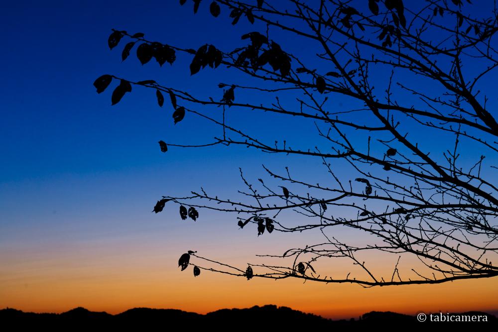 美の山公園 朝焼け