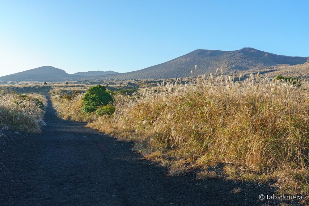 秋の三原山